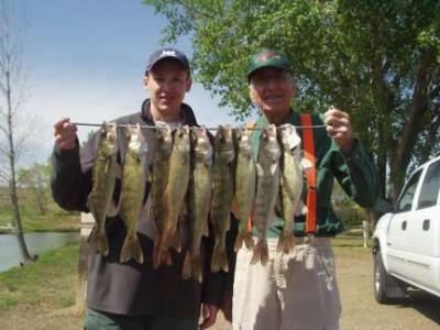 Walleye Fishing Lake Francis Case